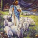 07/05 Ta là cửa chuồng chiên