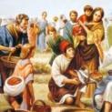 09/12 Thấy đoàn lũ dân chúng, Người động lòng xót thương họ