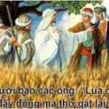 09/12 Lúa chín đầy đồng, thợ gặt thì ít