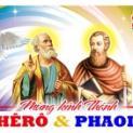 29/06 Con hãy chăn dắt các chiên mẹ và chiên con của Thầy