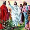 05/01 Thầy là Con Thiên Chúa, là Vua Israel
