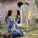 22/04 Hãy đi nói với anh em đến Galilêa mà gặp Ta ở đó