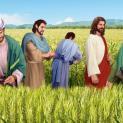 19/01 Ngày Sabbat làm ra vì loài người