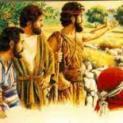 29/11 Nhận ra tiếng Chúa qua các biến cố