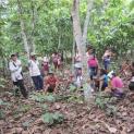 Thượng Hội Đồng Giám mục về khu vực Amazon: Sự động viên đối với các Linh mục Mỹ Latinh
