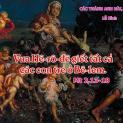 28/12 Hài Nhi chết vì Chúa