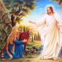 11/04 Ngài đã sống lại và sẽ đến xứ Galilêa