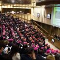 Tài Liệu Làm Việc Của Thượng Hội Đồng về Gia Đình năm 2015 (phần I, chương III và IV)