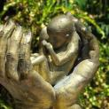 ĐTC cảm ơn các phụ nữ Argentina dấn thân chống phá thai