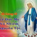 Đức Mẹ Maria vô nhiễm nguyên tội