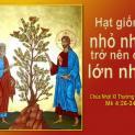 13/06 Chúng ta sẽ lấy gì mà hình dung nước Thiên Chúa?