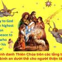"""""""Gloria in altissimo Deo et in terra pax in hominibus bonae voluntatis.""""  ( Lc 2,14)"""
